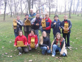Showing the bird houses