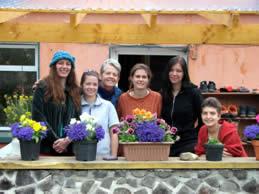The Crew & Volunteers